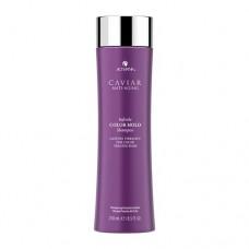 CAVIAR ANTI-AGING INFINITE COLOR - Matu šampūns 250ml